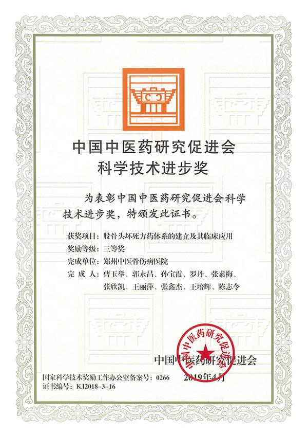 中国中医药研究促进会科学技术进步奖:股骨头坏死方药体系的建立及其临床应用