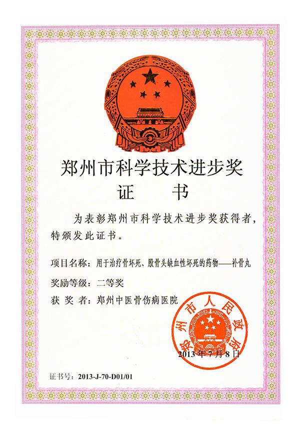 郑州市科学技术进步奖:用于治疗骨坏死、股骨头缺血性坏死的药物——补骨丸