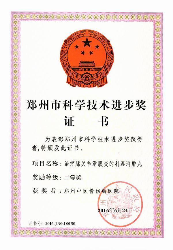 郑州市科学技术进步奖:治疗膝关节滑膜炎的利湿消肿丸