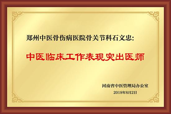 石文忠:中医临床工作表现突出医师