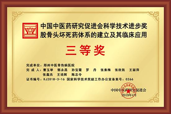 中国中医药研究促进会科学技术进步奖股骨头坏死药体系的建立及其临床应用三等奖