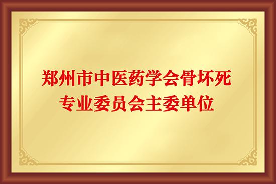 郑州市中医药学会骨坏死专业委员会主委单位
