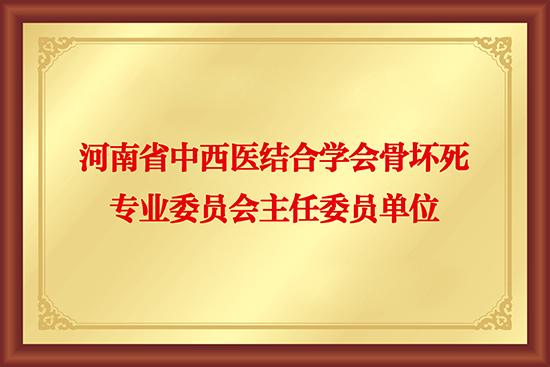 河南省中西医结合学会骨坏死专业委员会主任委员单位